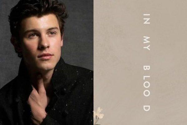 Shawn Mendes estrena dos singles muy personales