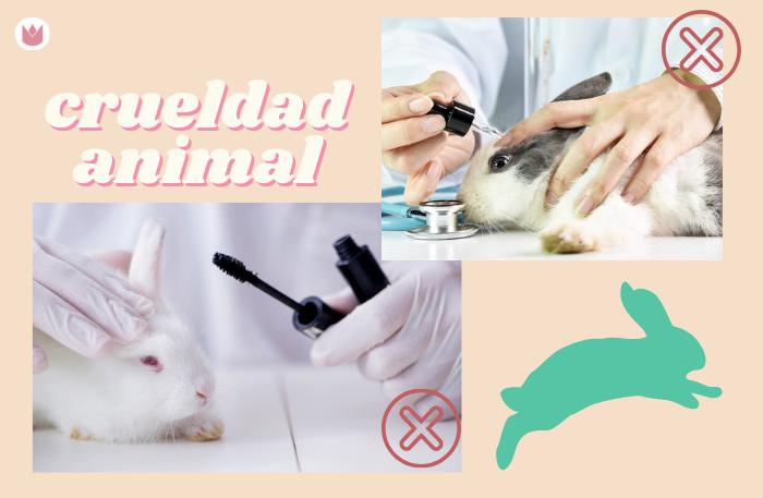 crueldad animal maquillaje